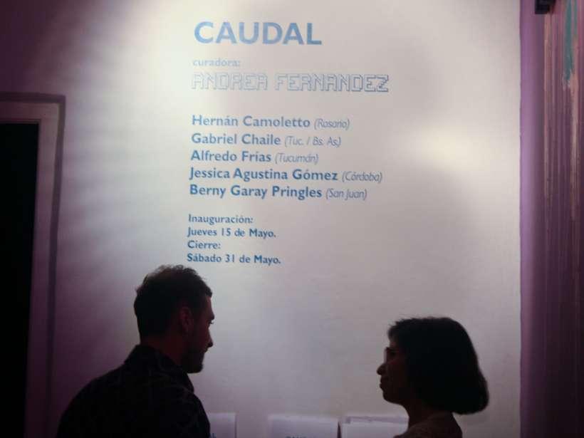 caudal-curaduria-andrea-fernandez-hernan-camoletto-gabriel-chaile-alfredo-frias-jessica-gomez-berny-garay-rusa-galeria-26.jpg