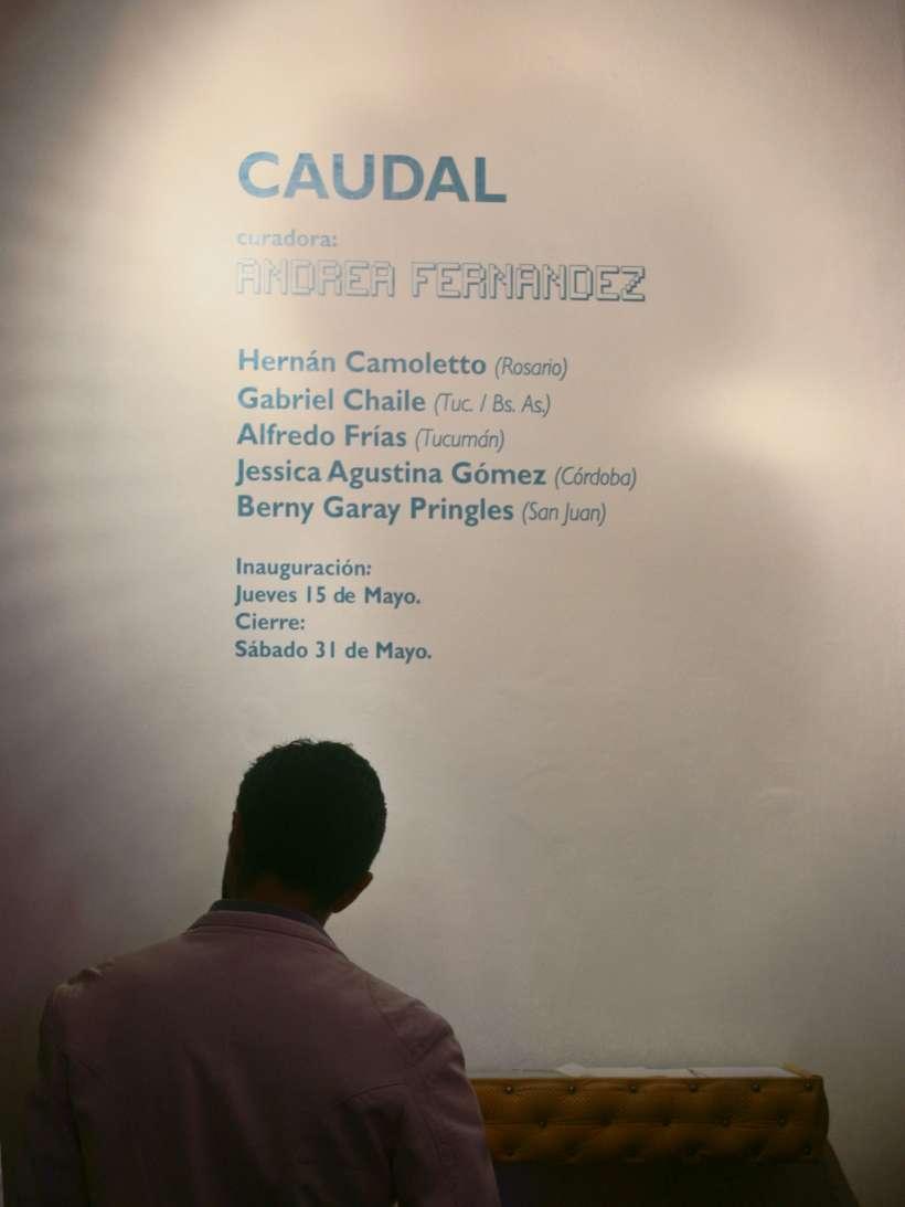 caudal-curaduria-andrea-fernandez-hernan-camoletto-gabriel-chaile-alfredo-frias-jessica-gomez-berny-garay-rusa-galeria-7c.jpg